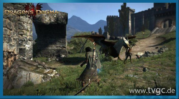 dragons dogma screenshot03