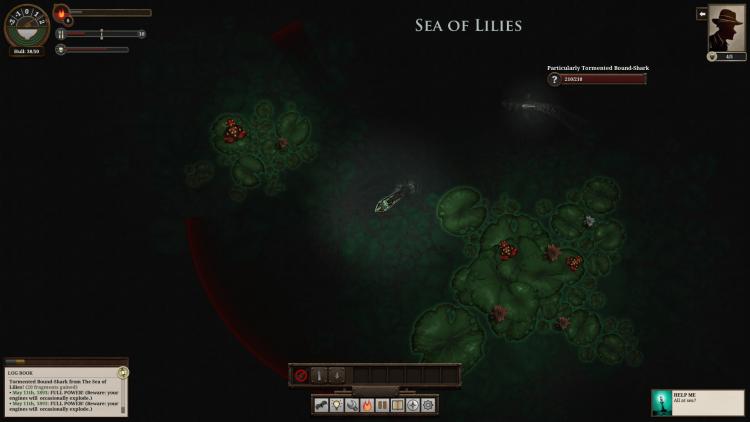 SeaofLilies1