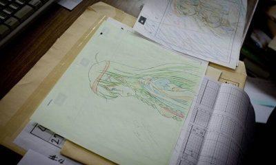 Die Anime Produktion