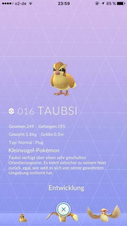 Pokémon Go Home - Kritikpunkt 1